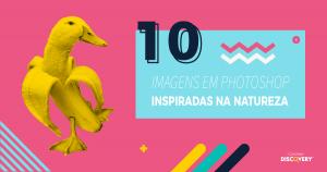 Imagem; Photoshop; Natureza; Marketing Digital; Design; Portugal