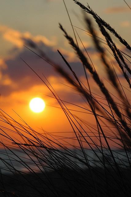 luz natural, por do sol, creative discovery, fotografia qualidade